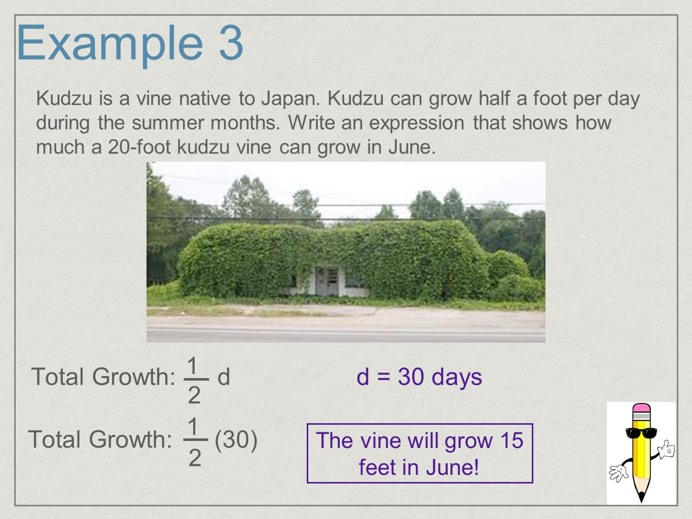 Example 3 Kudzu is a vine native to Japan.