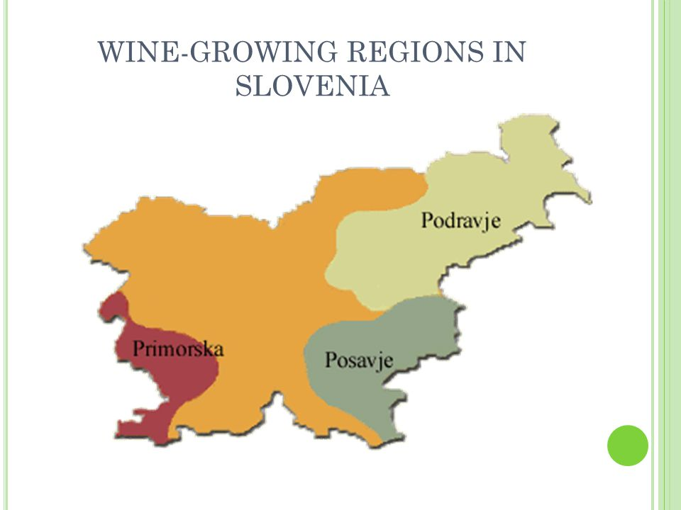 WINE-GROWING REGIONS IN SLOVENIA
