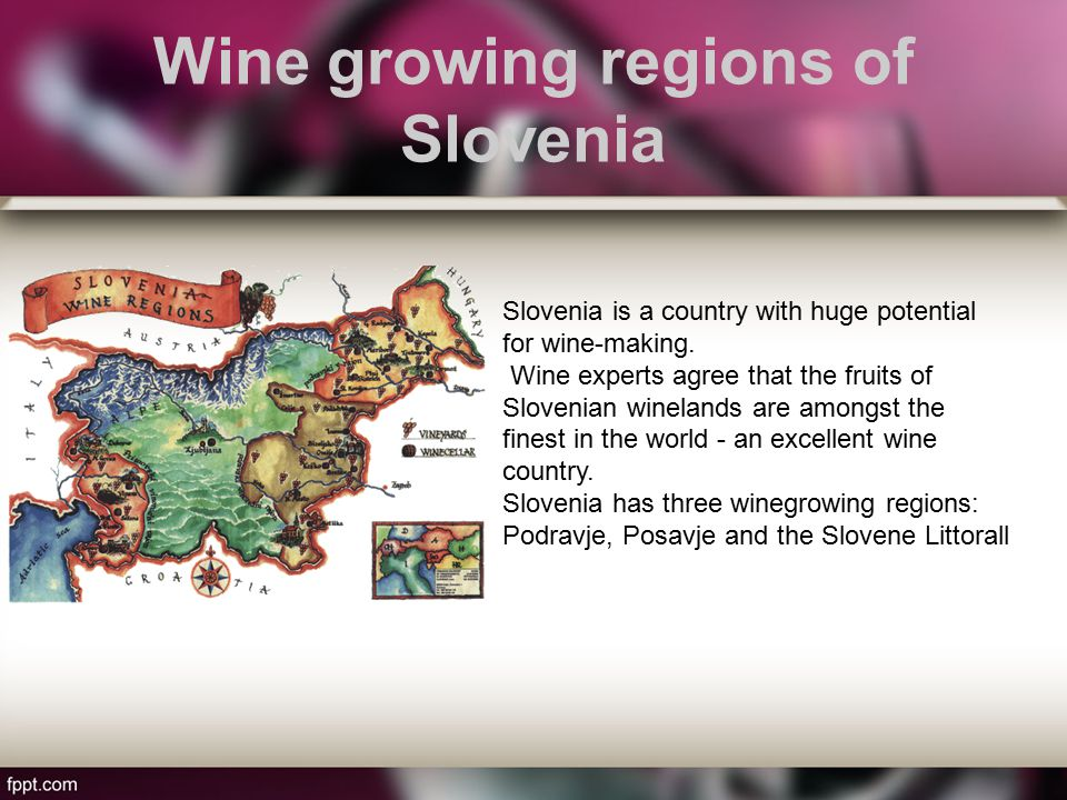 Wine growing regions of Slovenia Slovenia is a country with huge potential for wine-making.