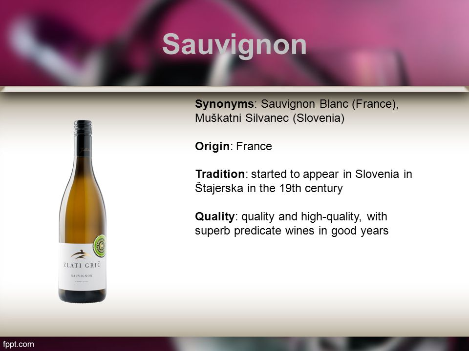 Sauvignon Synonyms: Sauvignon Blanc (France), Muškatni Silvanec (Slovenia) Origin: France Tradition: started to appear in Slovenia in Štajerska in the 19th century Quality: quality and high-quality, with superb predicate wines in good years