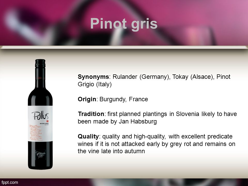 Pinot gris Synonyms: Rulander (Germany), Tokay (Alsace), Pinot Grigio (Italy) Origin: Burgundy, France Tradition: first planned plantings in Slovenia likely to have been made by Jan Habsburg Quality: quality and high-quality, with excellent predicate wines if it is not attacked early by grey rot and remains on the vine late into autumn