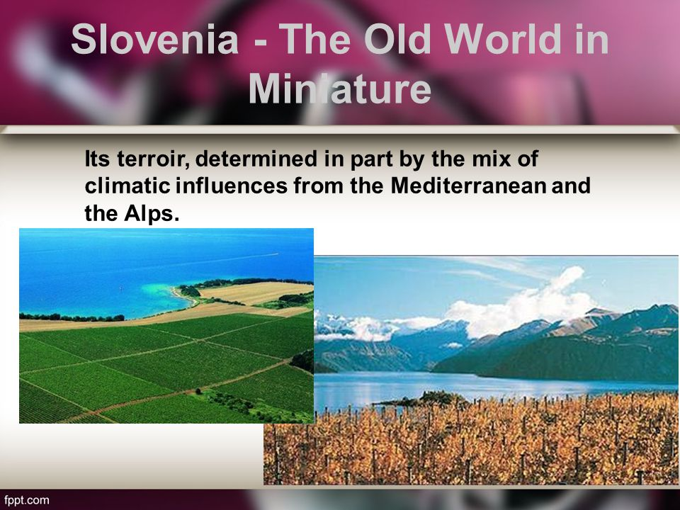 Slovenia - The Old World in Miniature Its terroir, determined in part by the mix of climatic influences from the Mediterranean and the Alps.