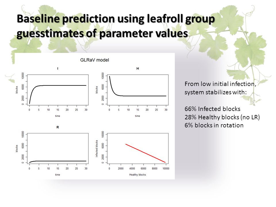Baseline prediction using leafroll group guesstimates of parameter values From low initial infection, system stabilizes with: 66% Infected blocks 28% Healthy blocks (no LR) 6% blocks in rotation