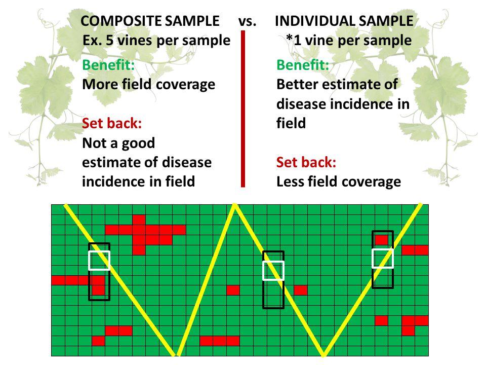 COMPOSITE SAMPLE vs. INDIVIDUAL SAMPLE Ex.