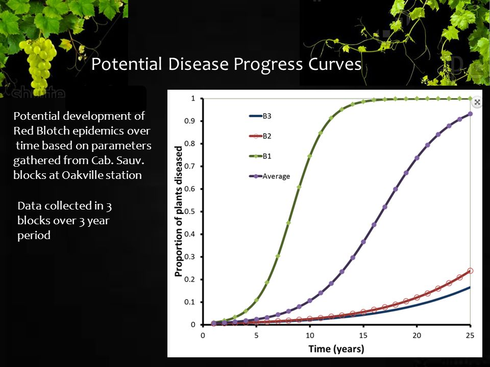 Potential development of Red Blotch epidemics over time based on parameters gathered from Cab.