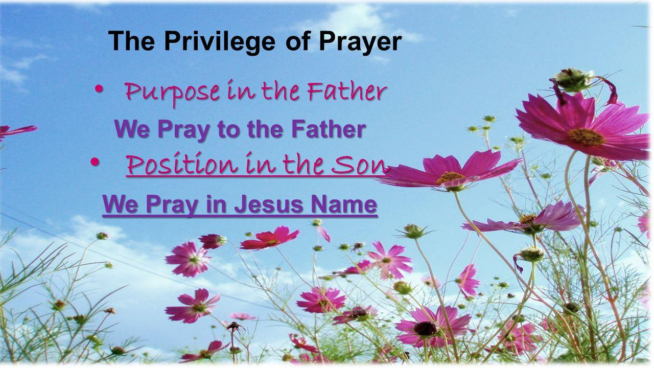 The Privilege of Prayer Purpose in the Father Purpose in the Father We Pray to the Father Position in the Son Position in the Son We Pray in Jesus Nam