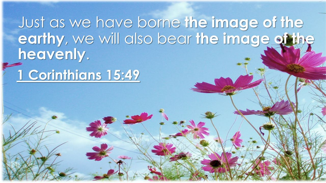 1 Corinthians 15:49 Just as we have borne the image of the earthy, we will also bear the image of the heavenly.