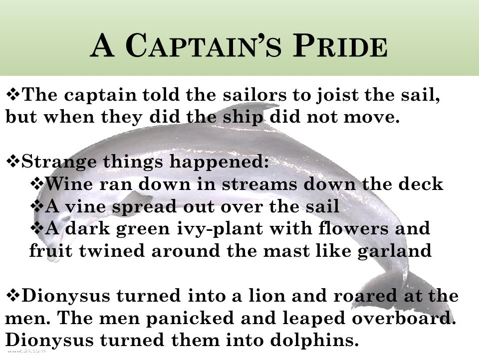 A C APTAIN ' S P RIDE  The captain told the sailors to joist the sail, but when they did the ship did not move.