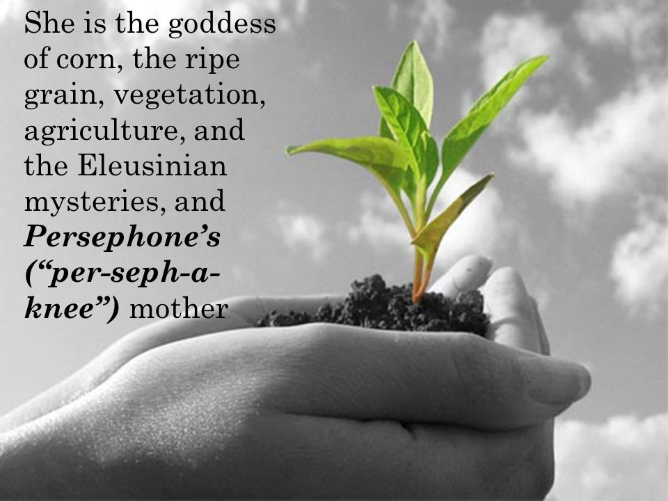 She is the goddess of corn, the ripe grain, vegetation, agriculture, and the Eleusinian mysteries, and Persephone's ( per-seph-a- knee ) mother