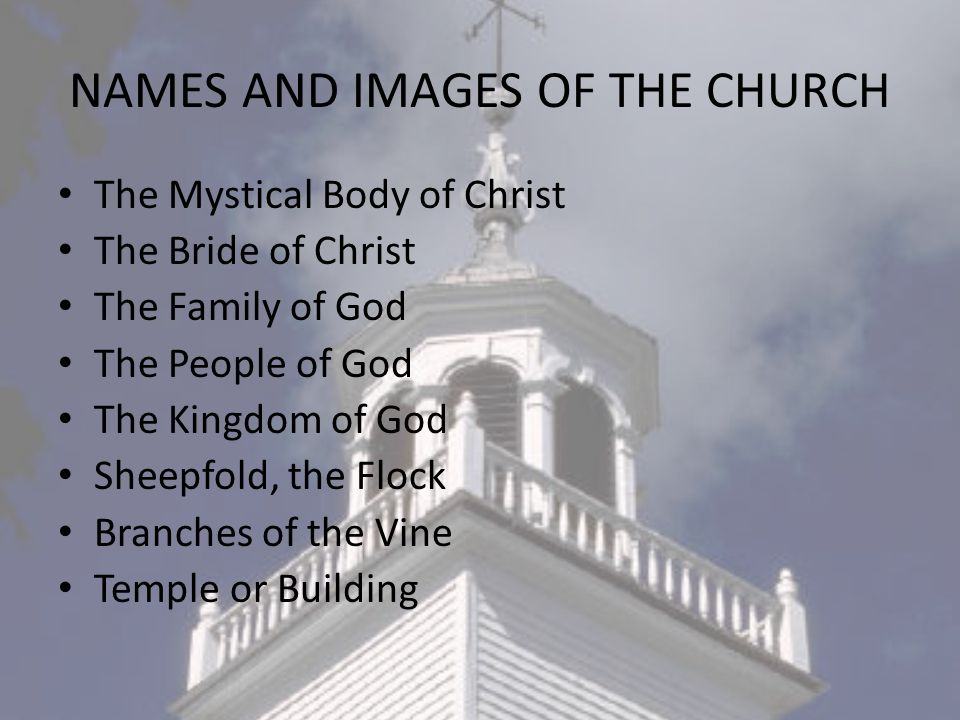 What do the Name and Images have in Common They all refer to a visible or Human Element.