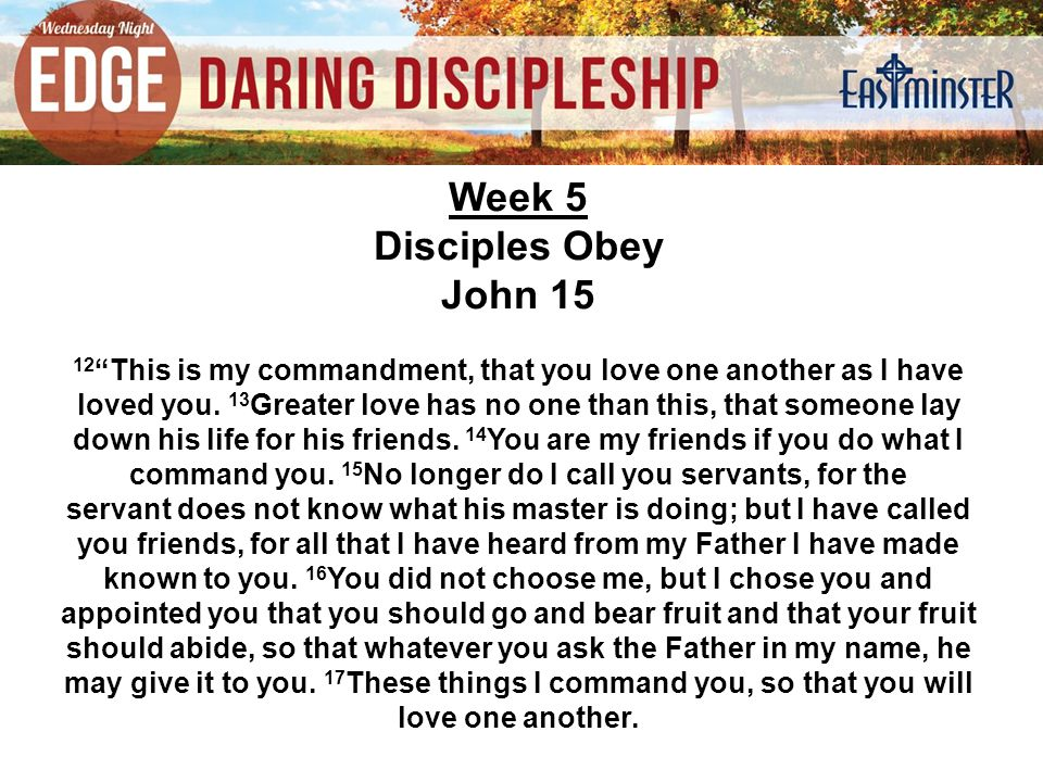 Week 5 Disciples Obey John This is my commandment, that you love one another as I have loved you.