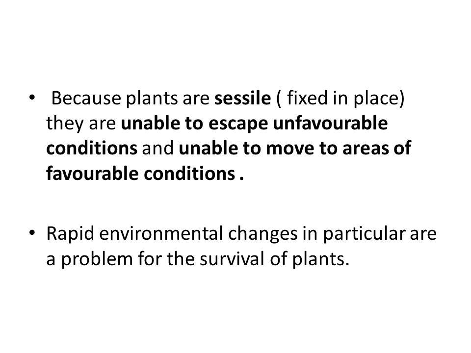 http://plantphys.info/plant_physiology/auxin.shtml