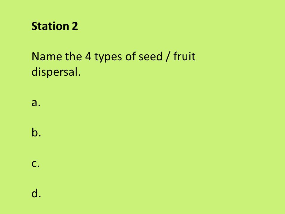Station 2 Name the 4 types of seed / fruit dispersal. a. b. c. d.