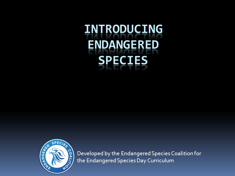 Developed by the Endangered Species Coalition for the Endangered Species Day Curriculum