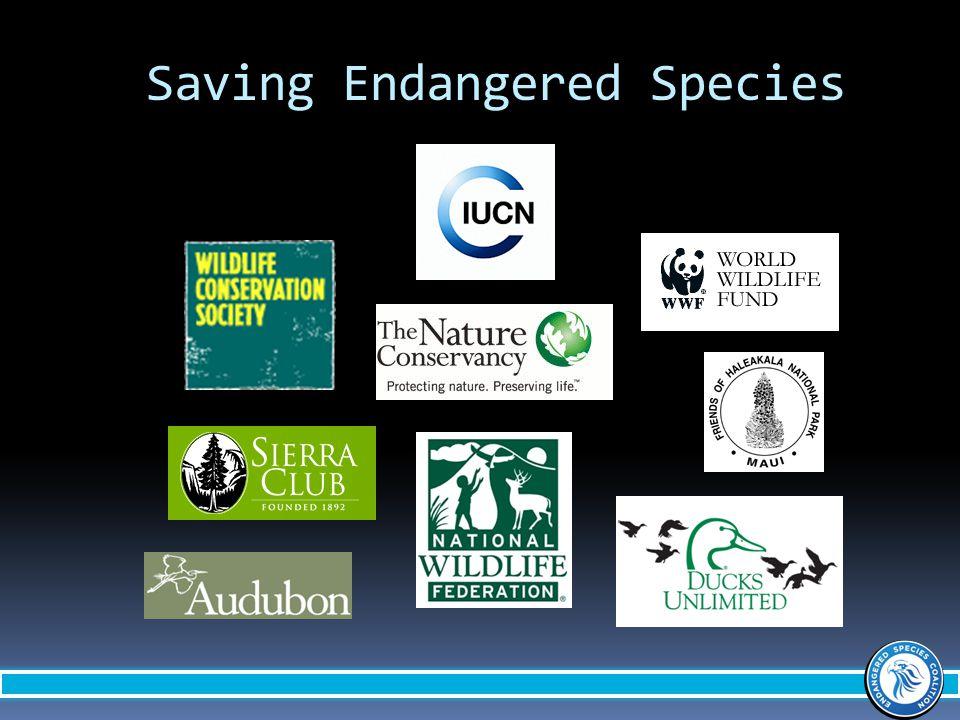 Saving Endangered Species