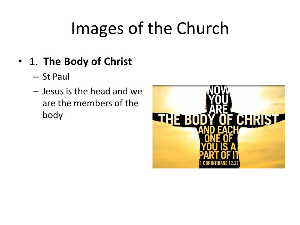 Images of the Church 1. The Body of Christ – St Paul – Jesus is the head and we are the members of the body