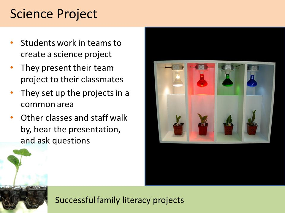 Students work in teams to create a science project They present their team project to their classmates They set up the projects in a common area Other classes and staff walk by, hear the presentation, and ask questions Science Project Successful family literacy projects