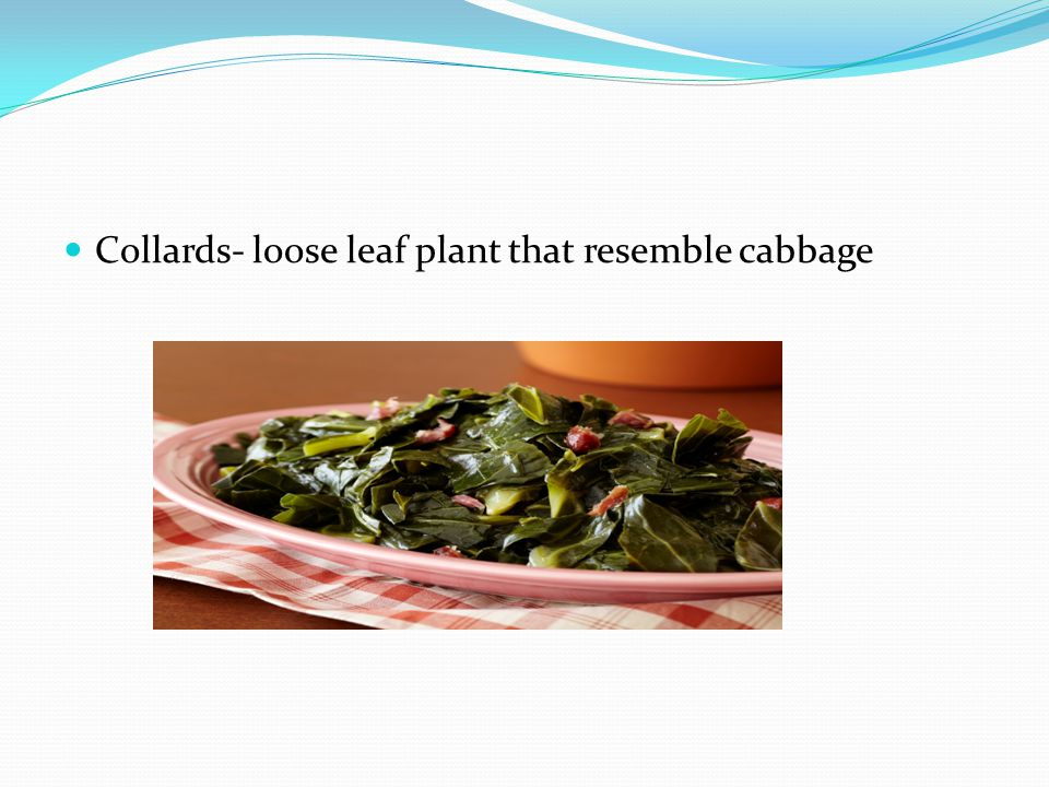 Collards- loose leaf plant that resemble cabbage