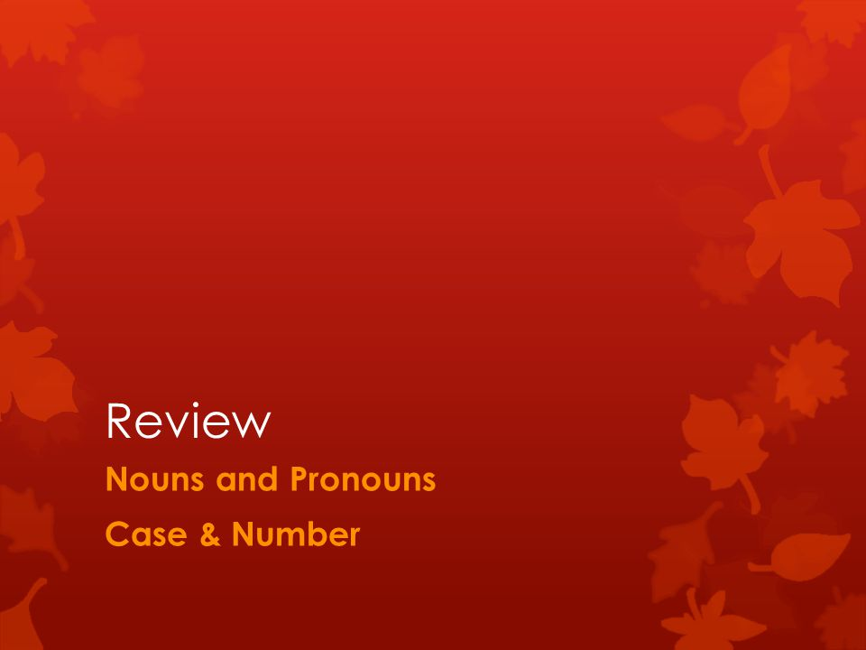 Review Nouns and Pronouns Case & Number