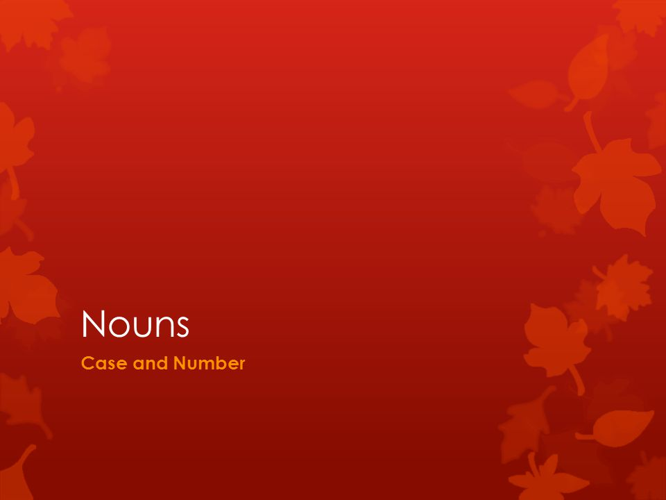Nouns Case and Number