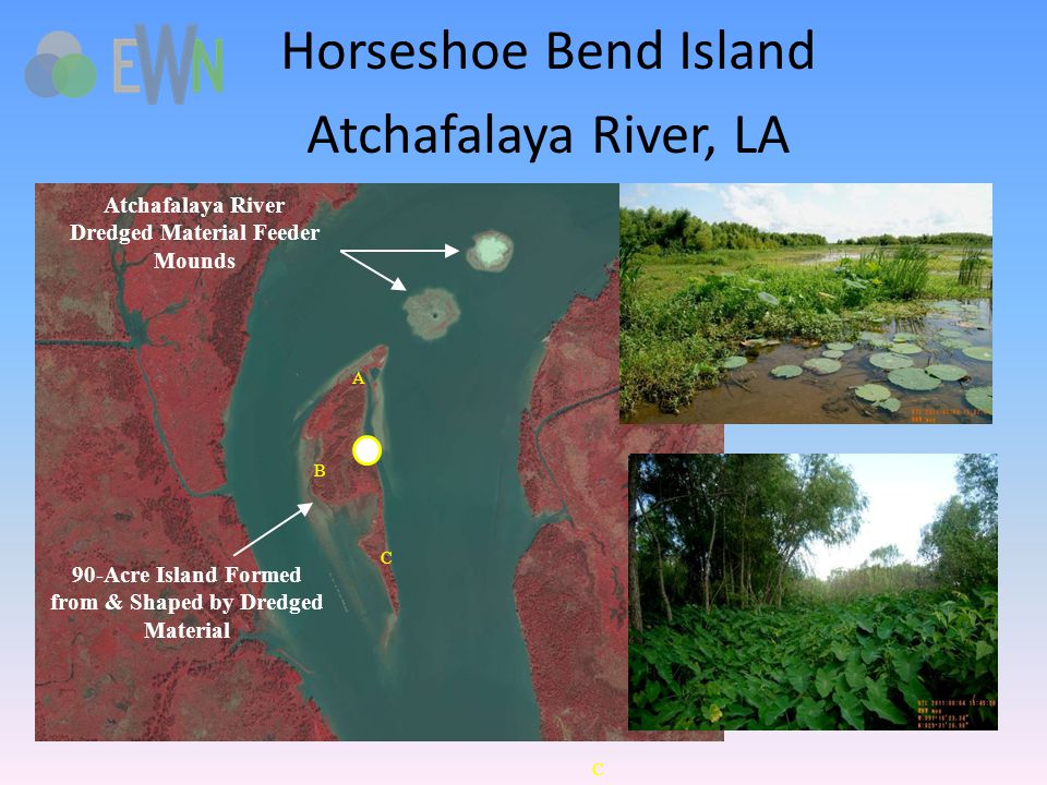 A B C Atchafalaya River Dredged Material Feeder Mounds 90-Acre Island Formed from & Shaped by Dredged Material A B C Horseshoe Bend Island Atchafalaya River, LA