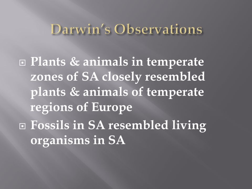  Plants & animals in temperate zones of SA closely resembled plants & animals of temperate regions of Europe  Fossils in SA resembled living organisms in SA