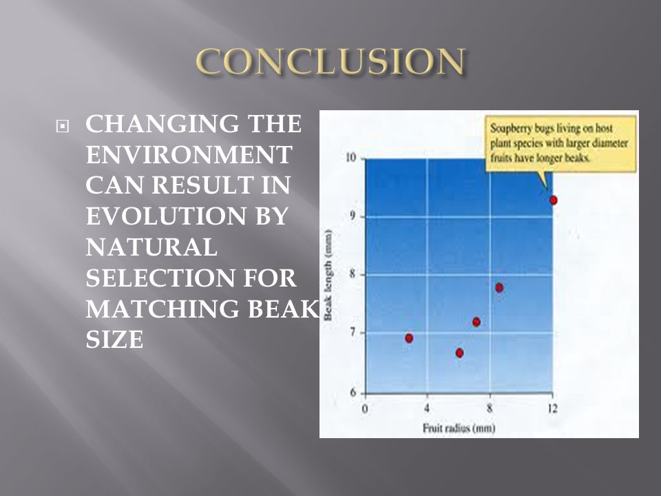  CHANGING THE ENVIRONMENT CAN RESULT IN EVOLUTION BY NATURAL SELECTION FOR MATCHING BEAK SIZE