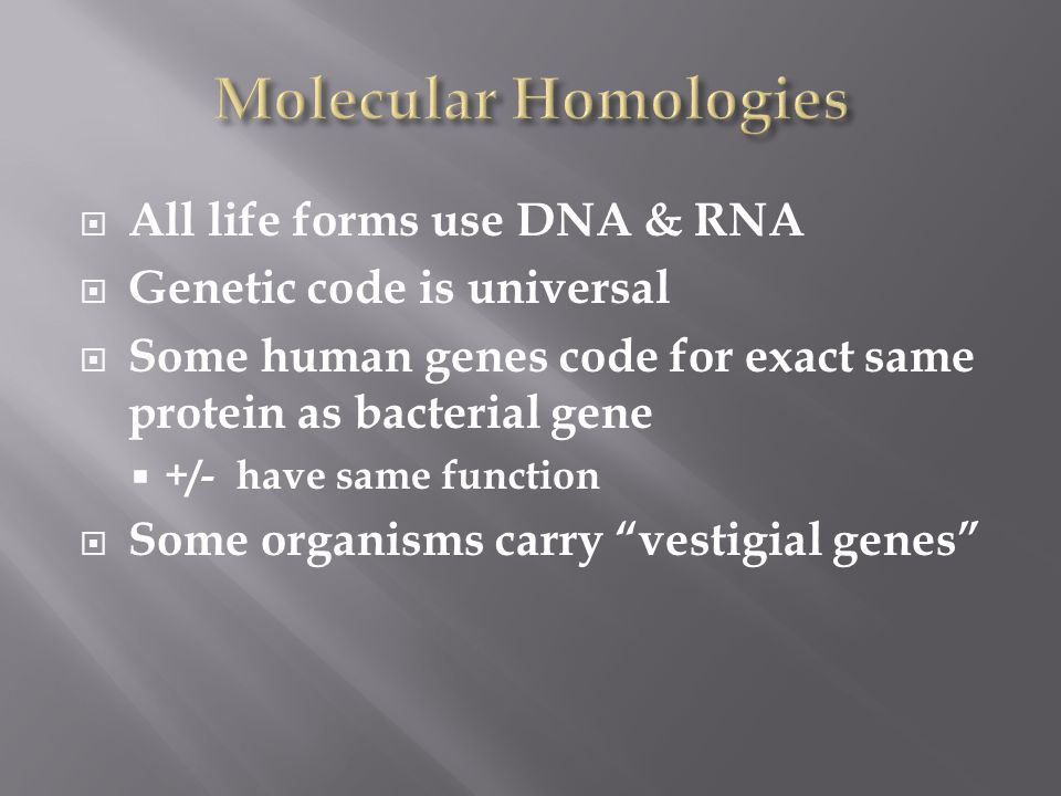  All life forms use DNA & RNA  Genetic code is universal  Some human genes code for exact same protein as bacterial gene  +/- have same function  Some organisms carry vestigial genes