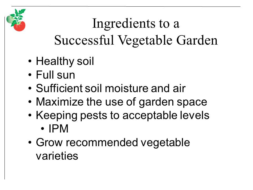 Ingredients to a Successful Vegetable Garden Healthy soil Full sun Sufficient soil moisture and air Maximize the use of garden space Keeping pests to acceptable levels IPM Grow recommended vegetable varieties
