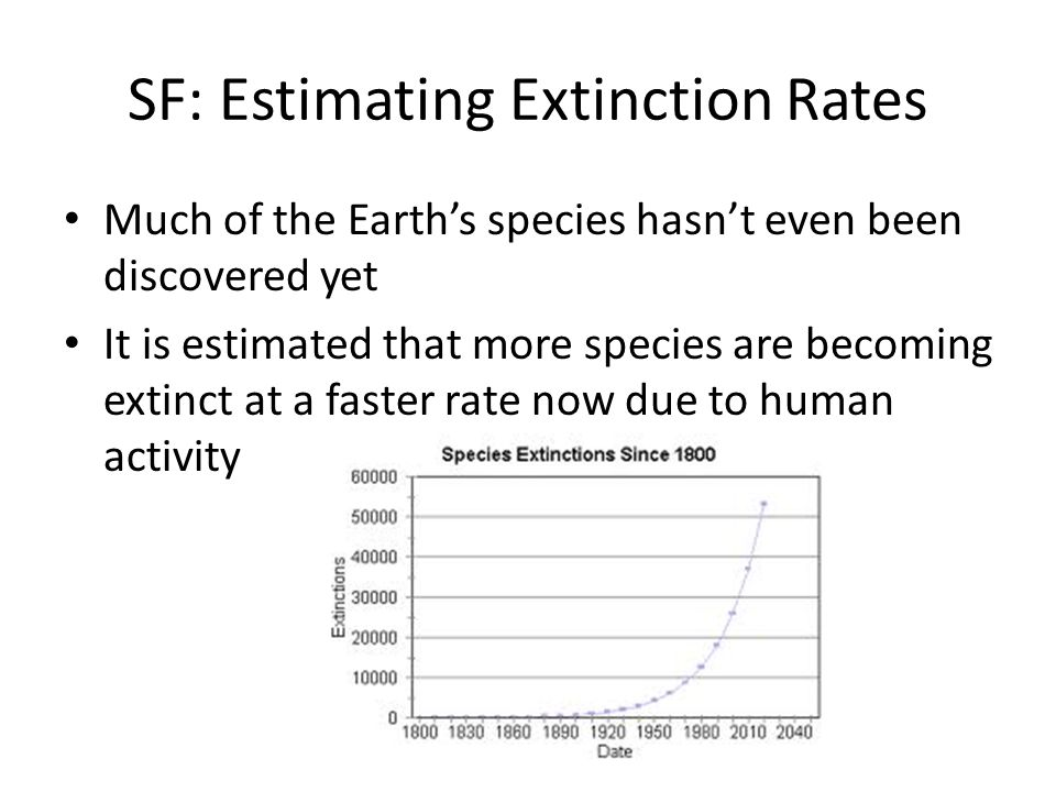 SF: Estimating Extinction Rates Much of the Earth's species hasn't even been discovered yet It is estimated that more species are becoming extinct at
