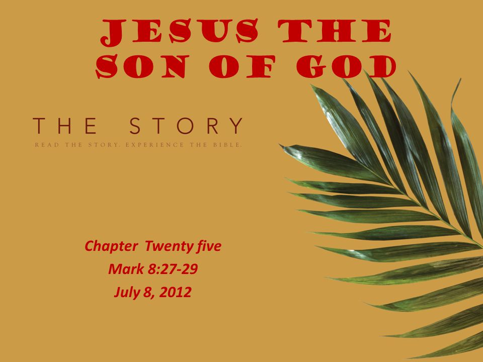JESUS THE SON OF GOD Chapter Twenty five Mark 8:27-29 July 8, 2012