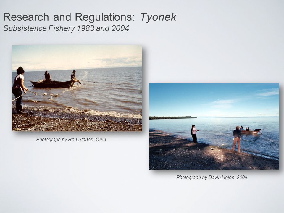 Research and Regulations: Tyonek Subsistence Fishery 1983 and 2004 Photograph by Ron Stanek, 1983 Photograph by Davin Holen, 2004