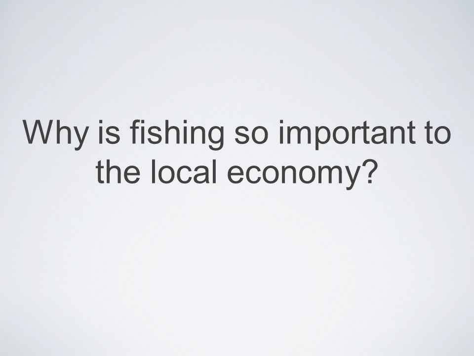 Why is fishing so important to the local economy