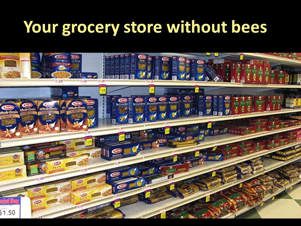 Your grocery store without bees
