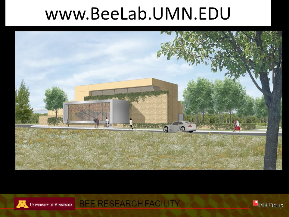 BEE RESEARCH FACILITY PERSPECTIVE – Two Level Option www.BeeLab.UMN.EDU