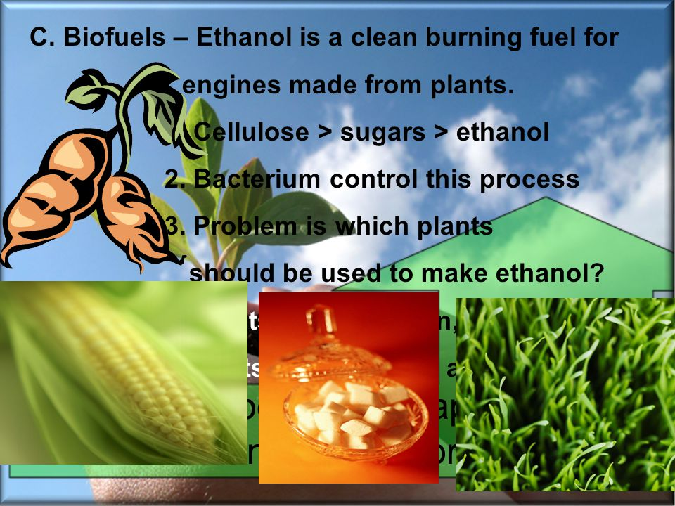 C. Biofuels – Ethanol is a clean burning fuel for engines made from plants. 1. Cellulose > sugars > ethanol 2. Bacterium control this process 3. Probl