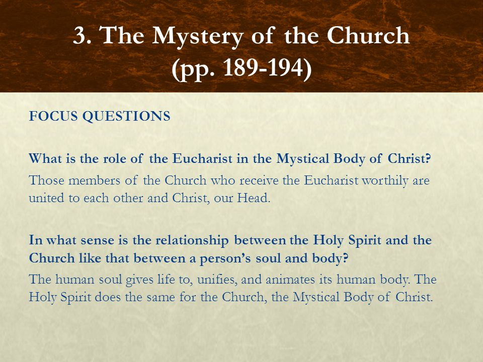 FOCUS QUESTIONS What is the role of the Eucharist in the Mystical Body of Christ? Those members of the Church who receive the Eucharist worthily are u
