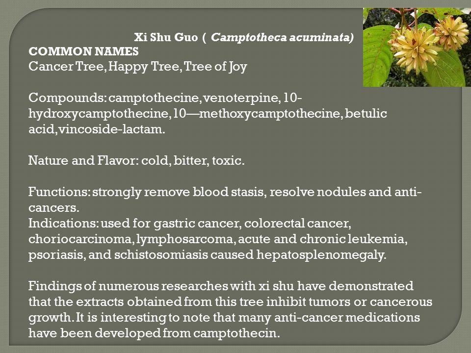 Xi Shu Guo ( Camptotheca acuminata) COMMON NAMES Cancer Tree, Happy Tree, Tree of Joy Compounds: camptothecine, venoterpine, 10- hydroxycamptothecine,