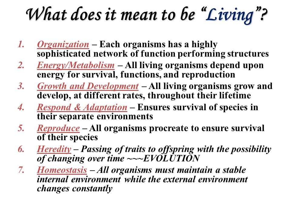 "What does it mean to be ""Living""? 1.Organization – Each organisms has a highly sophisticated network of function performing structures 2.Energy/Metabo"