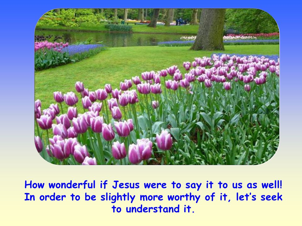 How wonderful if Jesus were to say it to us as well.