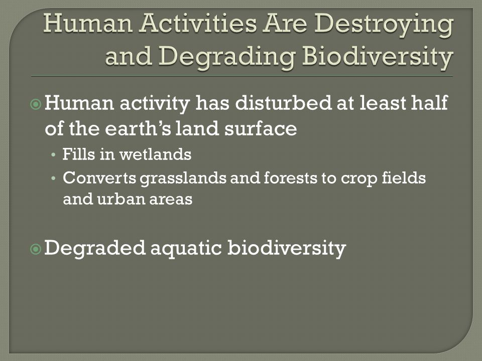  Human activity has disturbed at least half of the earth's land surface Fills in wetlands Converts grasslands and forests to crop fields and urban ar