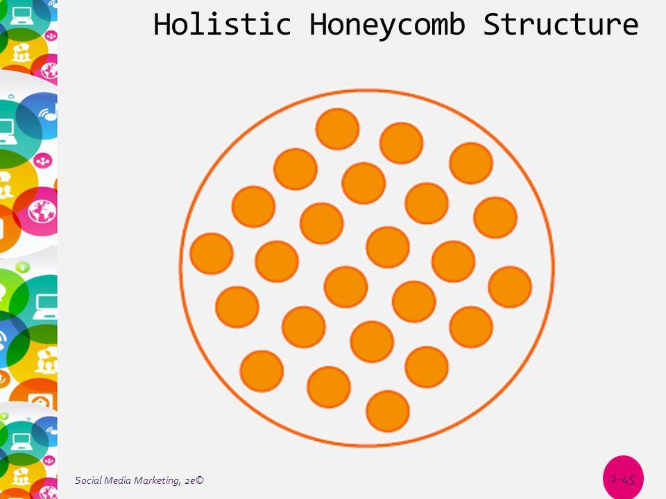 Holistic Honeycomb Structure Social Media Marketing, 2e© 2-45