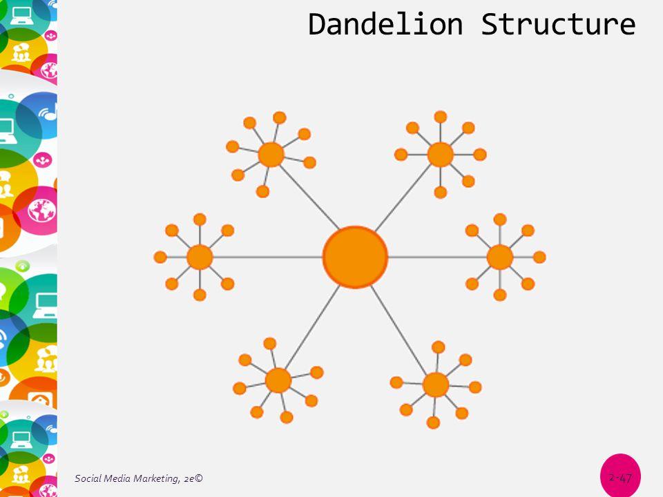 Dandelion Structure Social Media Marketing, 2e© 2-47