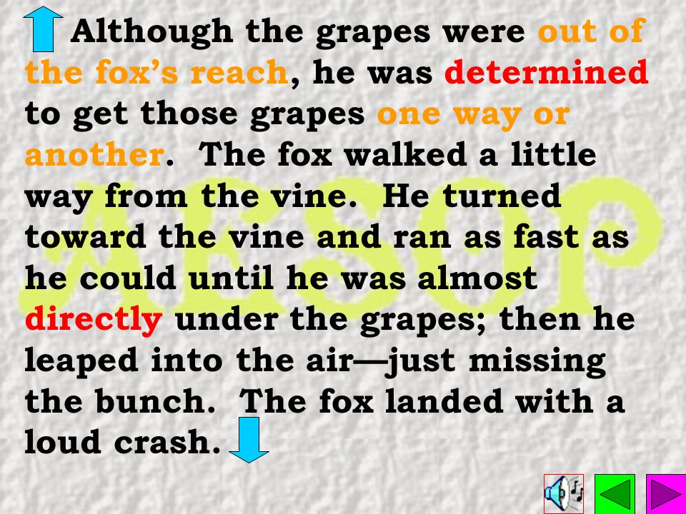 Although the grapes were out of the fox's reach, he was determined to get those grapes one way or another.