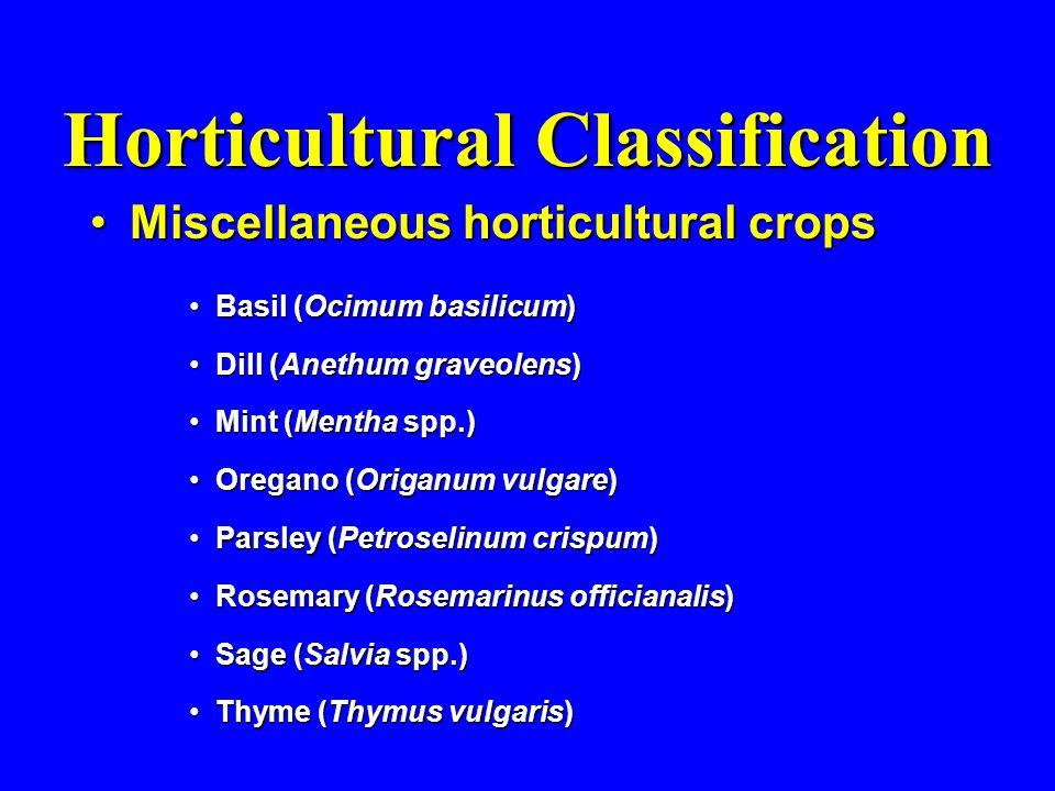 Horticultural Classification Miscellaneous horticultural cropsMiscellaneous horticultural crops Basil (Ocimum basilicum)Basil (Ocimum basilicum) Dill (Anethum graveolens)Dill (Anethum graveolens) Mint (Mentha spp.)Mint (Mentha spp.) Oregano (Origanum vulgare)Oregano (Origanum vulgare) Parsley (Petroselinum crispum)Parsley (Petroselinum crispum) Rosemary (Rosemarinus officianalis)Rosemary (Rosemarinus officianalis) Sage (Salvia spp.)Sage (Salvia spp.) Thyme (Thymus vulgaris)Thyme (Thymus vulgaris)