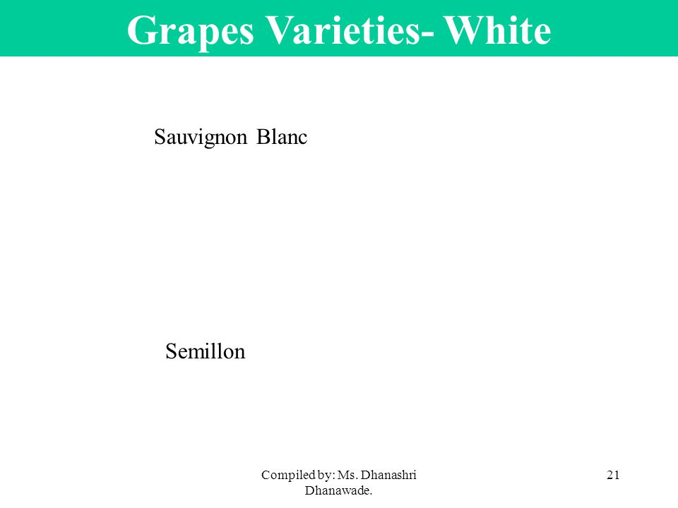 Compiled by: Ms. Dhanashri Dhanawade. 21 Grapes Varieties- White Sauvignon Blanc Semillon