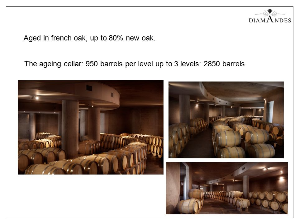 Aged in french oak, up to 80% new oak. The ageing cellar: 950 barrels per level up to 3 levels: 2850 barrels