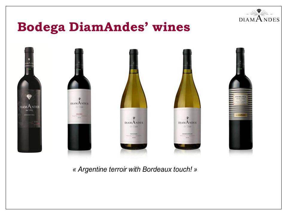 Bodega DiamAndes' wines