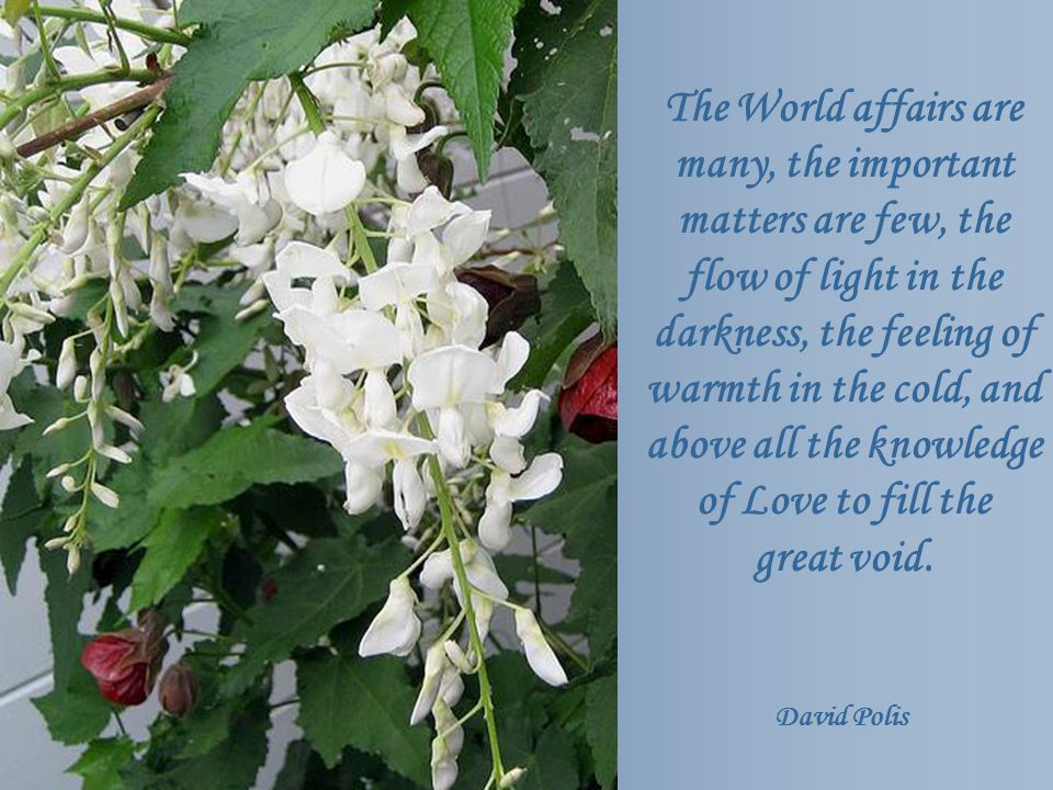 The World affairs are many, the important matters are few, the flow of light in the darkness, the feeling of warmth in the cold, and above all the knowledge of Love to fill the great void.
