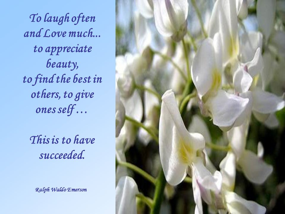 To laugh often and Love much...